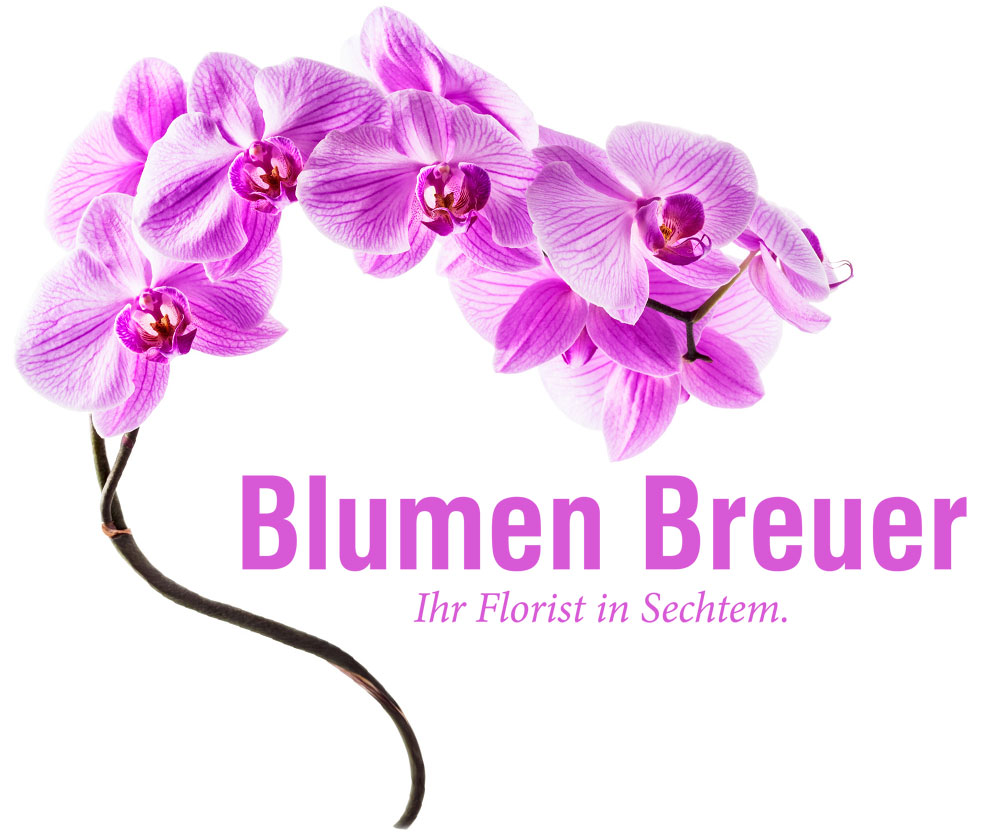 Blumen Breuer